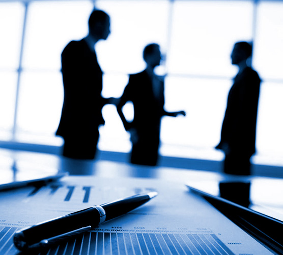 Consultoría y asesoramiento
